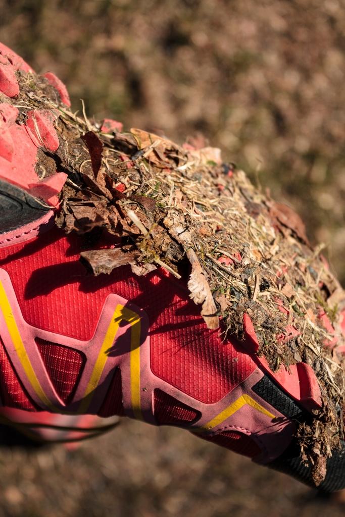 Dogpoo_Shoes110517_sml