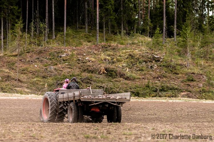 ElliJuhaDriving_TractorField