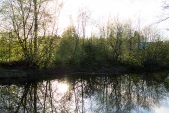 RiverSunset_02