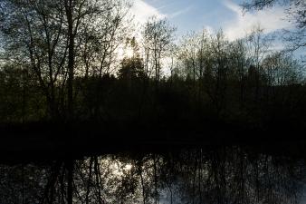 RiverSunset_03