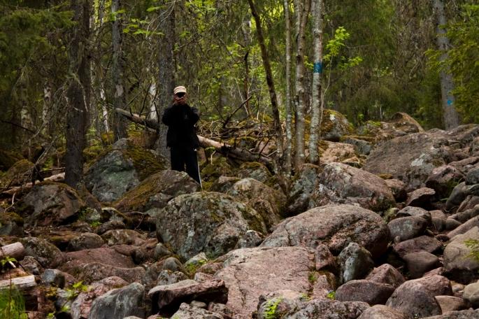 among-mossy-rocks