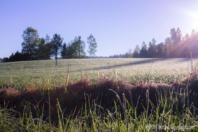 Brilliant Fields