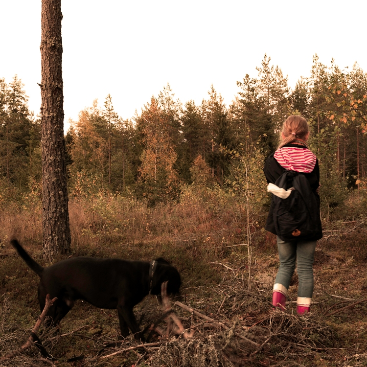 lilli-and-loke-in-the-forest