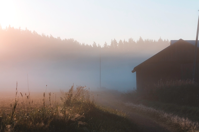sombre-farm-building-in-misty-sunrise