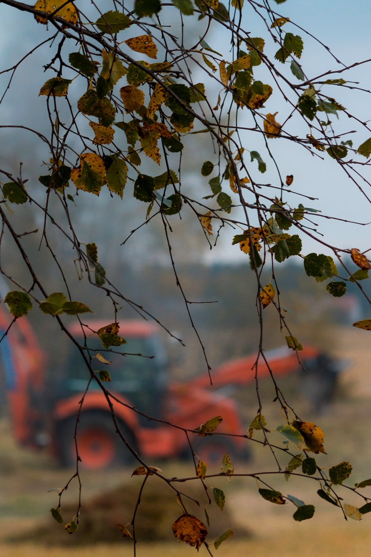 autumn-leaves-and-digger-out-of-focus