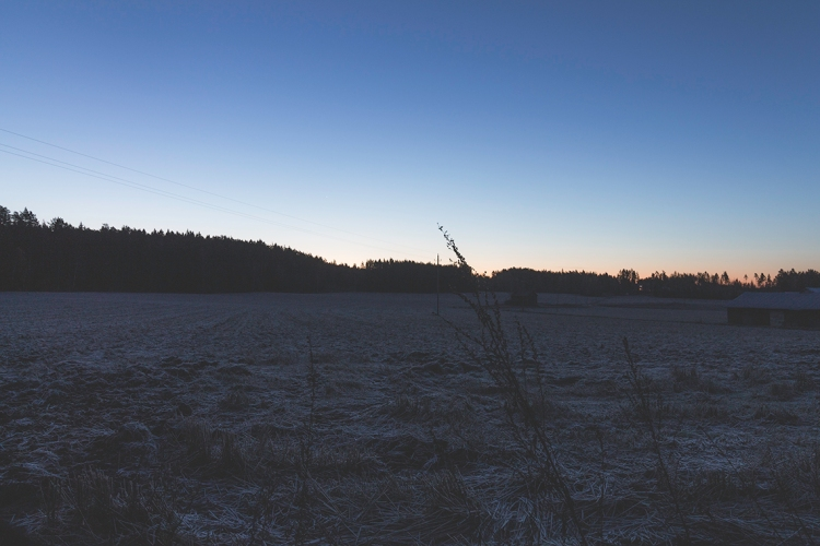 dawn-over-frosted-field