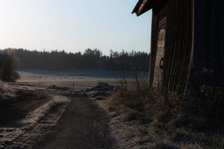 farm-building-in-frost