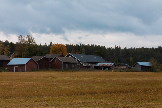 finnish-autumn-farm