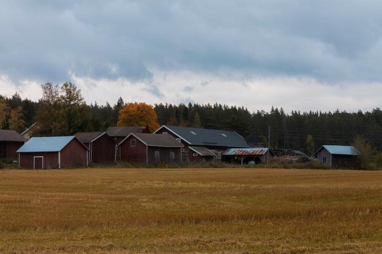 finnish-autumn-farm