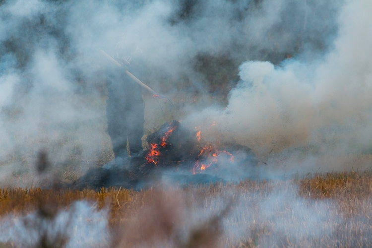 man-smoke-and-fire-in-field