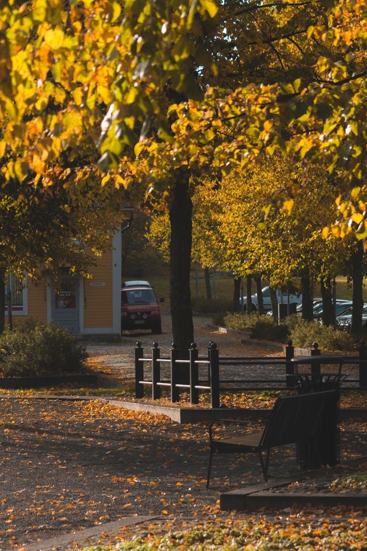 park-bench-vanha-rauma