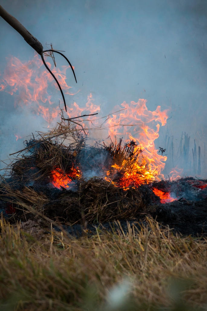 pitchfork-in-burning-hay