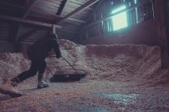 shoveling-wood-chips