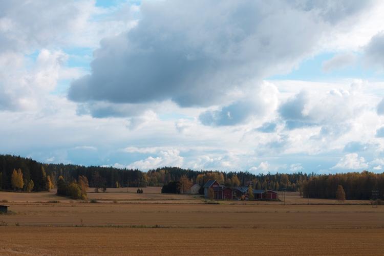 the-farm-from-afar