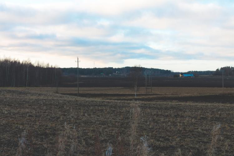 more-soft-light-over-fields
