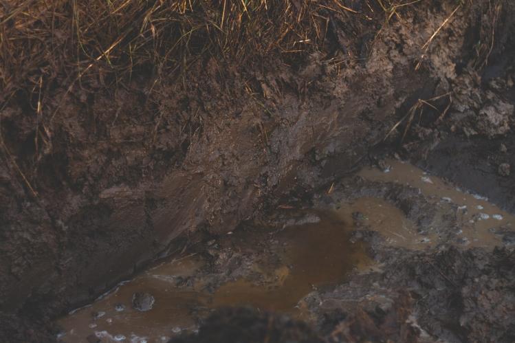 muddy-trenches