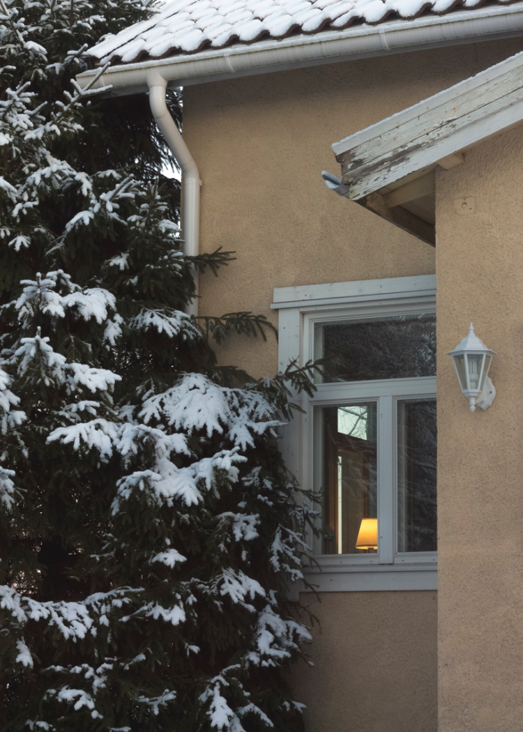 cozy-lamp-in-spruce-adorned-window