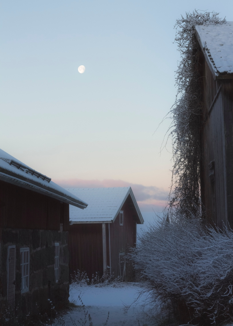 moon-among-old-buildings