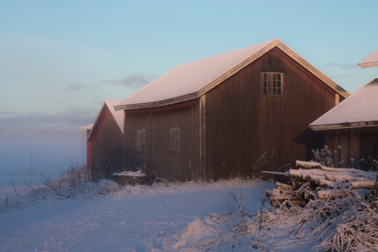 soft-winter-light-on-wagon-house