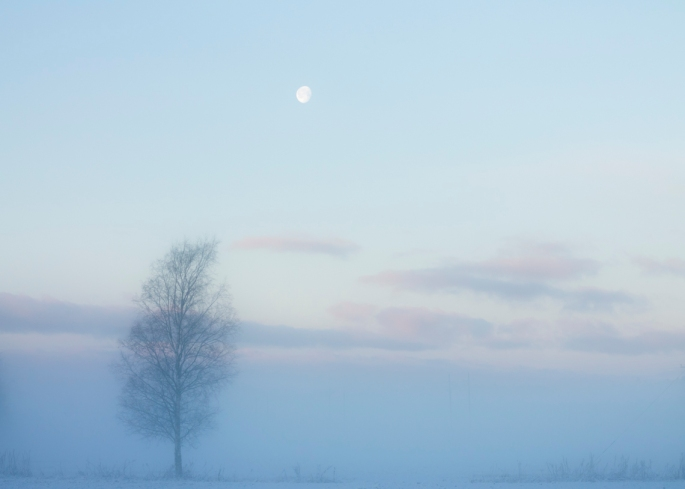 the-moon-in-misty-magical-winter-wonderland