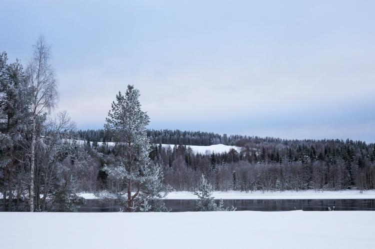 frozen-river-landscape