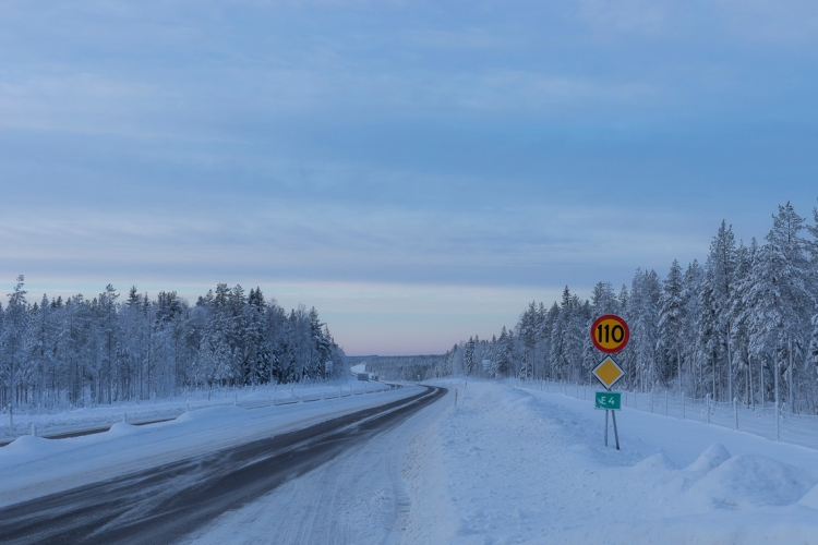 frozen-roads-and-snowy-forests