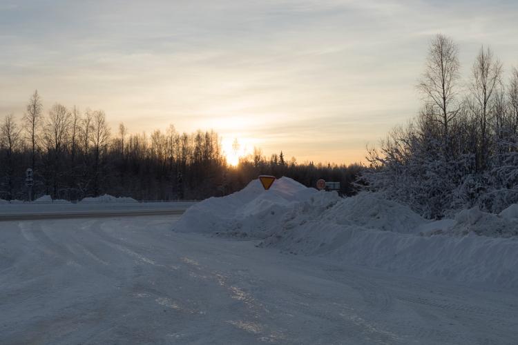low-winter-sun