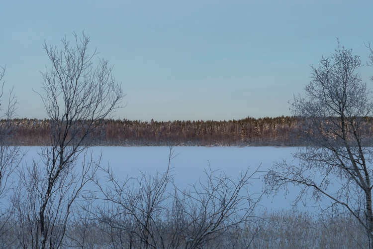 more-frozen-lakes-and-forests