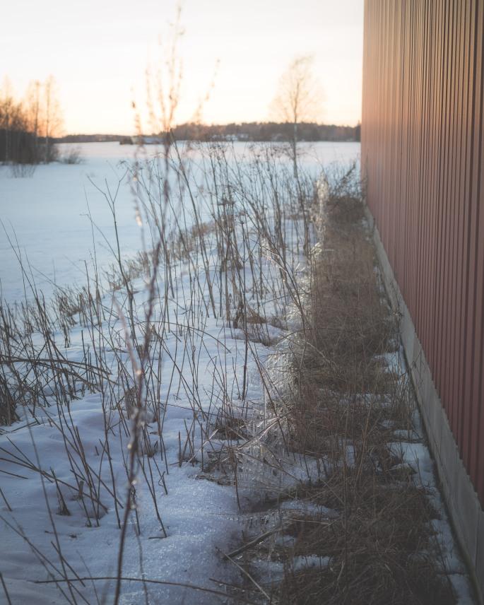 icy-wonderland