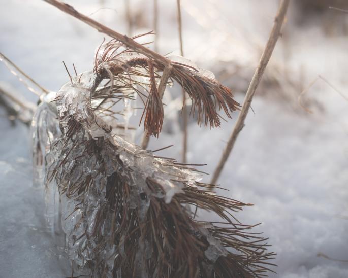 molten-ice