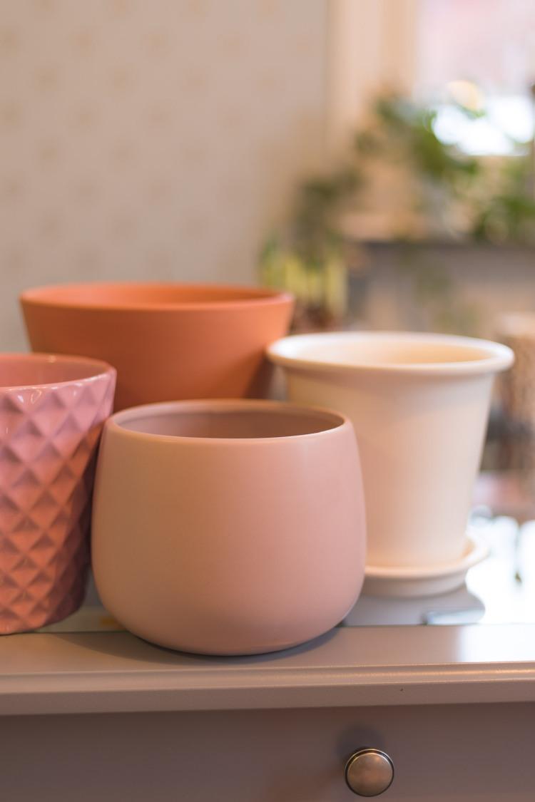 new-pots